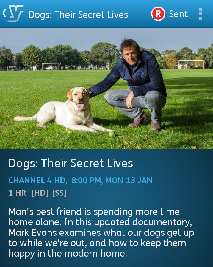 The secret lives of dogs on channel 4